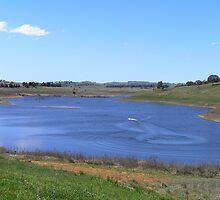 Dam or Duck Pond? by Jan Richardson