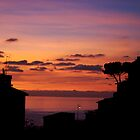 Riomaggiore at sunset by Chris van Raay