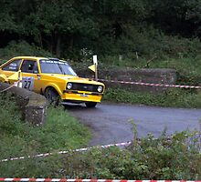 CORK 20 RALLY , MK 2 ESCORT by TIMKIELY