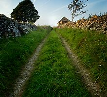 'Old Shack Lane' by John Anthony Photography
