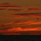 Tropical Sunset by MMerritt