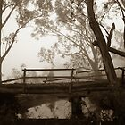 Bridge on Frosty Morning by vixstix