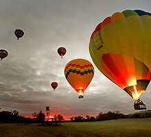 balloons at Dawn by Peter Hodgson