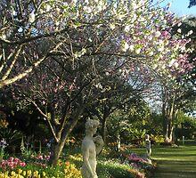 Man In The Garden by Melissa Park