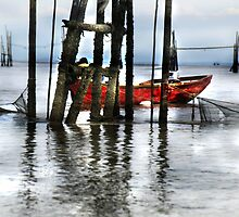 BORNEO FISHERMAN by diddle
