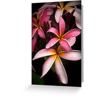 Scent of summer rain Greeting Card