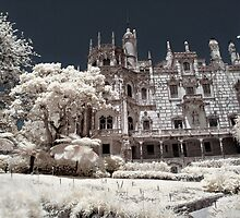 The Lords Manor by CalendaRus