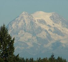 Another Shot Of Mt. Rainier by Jonice