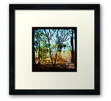 Mysterious Enchantment II Framed Print