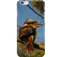 Kookaburra In Tree No.2 iPhone Case/Skin
