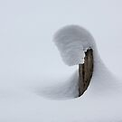 Shapes in snow 1 by Dave Hare