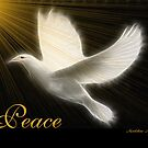 PEACE by Madeline M  Allen