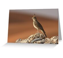 Crested Lark and Dunes Greeting Card