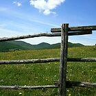 fenced by CourtneyLayne