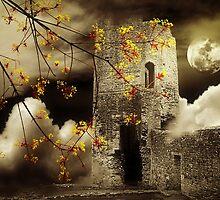 Old Fantasy by Christine Lake