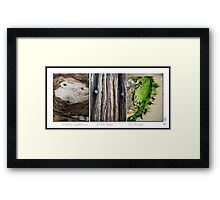 All The Faces Framed Print
