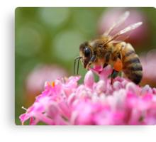 Bee Brave Canvas Print