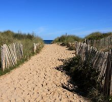 Chestnut Fence To The Beach by aidan  moran