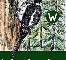 W is for Woodpecker by DavidDonovan