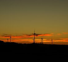 Wind Farm Sunset by Biggzie