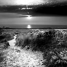 St Ouen Sand Dunes by Mark Bowden