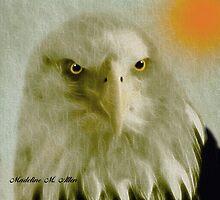 BALD EAGLE by Madeline M  Allen