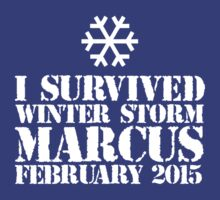 'I Survived Winter Storm Marcus February 2015' T-shirts, Hoodies, Accessories and Gifts T-Shirt