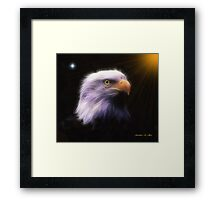 EAGLE LOOKOUT Framed Print