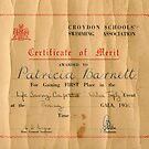 My Certificate of Merit by pat oubridge