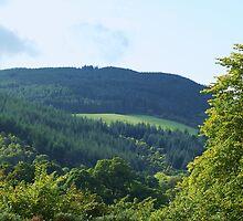 the hills by loch ness...... by karen Bradshaw