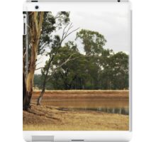 Country Dam iPad Case/Skin