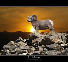 CHIEFTAIN BIG HORN SHEEP  by Skye Ryan-Evans