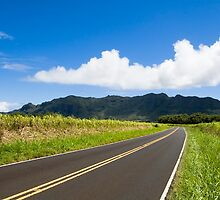 Puhi Back Roads by Ken Kusaka