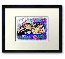 Pookie 2 The Magical Cat Framed Print