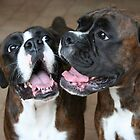 Luthien &amp; Arwen -Boxer Dogs Series- by Evita