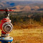 The Hydrant by K Futol