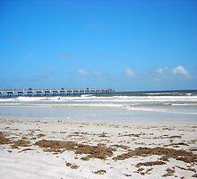 Jacksonville Beach, Florida by DaveVan