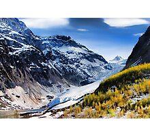 Bear Glacier Photographic Print