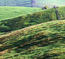 Green Pastures  by helmutk