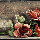 7.2.2015: Plastic Flowers by Petri Volanen