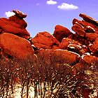 Red Rocks by Harlan Mayor