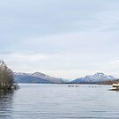 Loch Lomond Shores by Stevie B