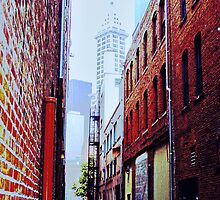 Seattle Alley by Tamara Valjean