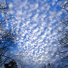 Clouds in the grips by Tamara Valjean