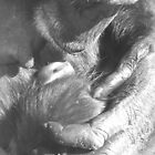 Mother and Child by Katherine Wiles