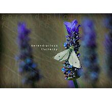 serendipitous flutterby  Photographic Print