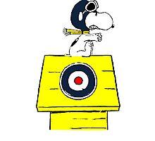 Snoopy vs Red Baron Photographic Print