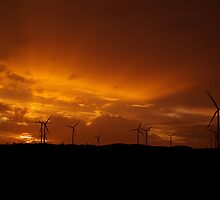 Sunset at the Lake Bonney Wind Farm by Biggzie