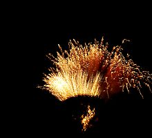 Fireworks at the Millicent Show by Biggzie