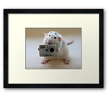 Its not easy being a good photographer! Framed Print